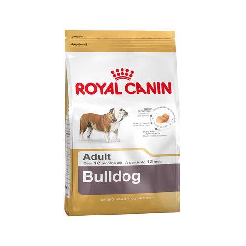 ROYAL CANIN BULLGOG ANGLAIS ADULT Sac de 12 kg croquettes pour Bouledogue Anglais adulte (12 mois)