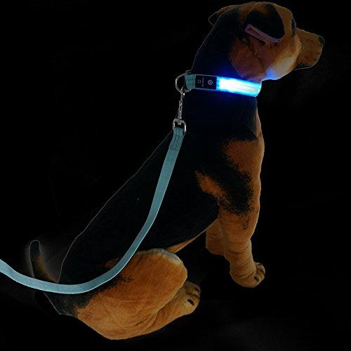led-dog-collar-guinzaglio-set-cane-luce-fibbia-a-sgancio-flash-led-collare-conduce-corda-da-masbrill