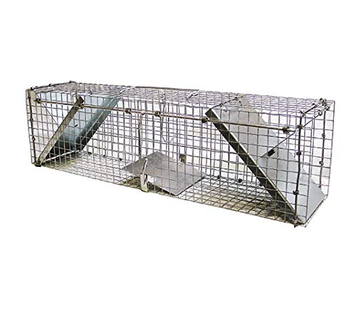 FINCA CASAREJO Jaula Trampa Eco. Jaula Trampa para mapaches, Gatos, Zorros y Otras alimañas (PGZ) Captura de Animales Vivos
