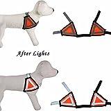 Weltzukaufen Sicherheitsweste mit Reflexstreifen für Hunde Warnwesten Einstellbar in Orange