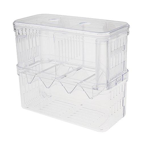 Sharplace Fisch Isolation Box multifunktionale Zuchttanks Aquarium Züchter Box