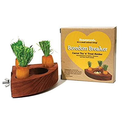 Rosewood Boredom Breaker Carrot Toy 'n' Treat Holder for Small Animals by Rosewood