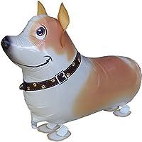 Suchergebnis Auf Amazonde Für Jack Russel Terrier Basteln Malen