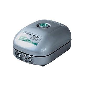 Aquarline Hailea Aco-9620 Six Outlet Air Pump, 800 Liter/Hour 41S83VfdJlL