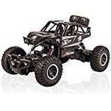 Rock Crawler - 4WD Off Road RC Monster Truck (Alloy) 1:20 - 2.4Ghz Remote Control Car – SL-110A