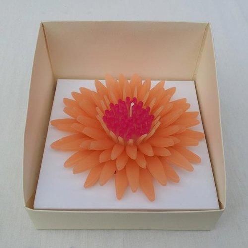wasiwax-luz-naranja-aroma-a-daisy-vela-flotante-de-belle-l