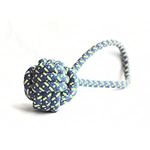 Foodie Puppies Cotton Chew Ball Rope Toy for Dog (Colour May Vary)
