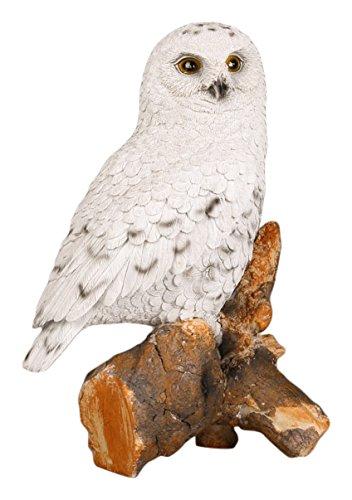 FARMWOOD 3089lw 24x 15x 36cm, vida real nieve diseño de búho–Multicolor