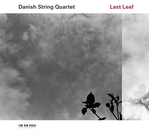 Last Leaf (Live-leaf)