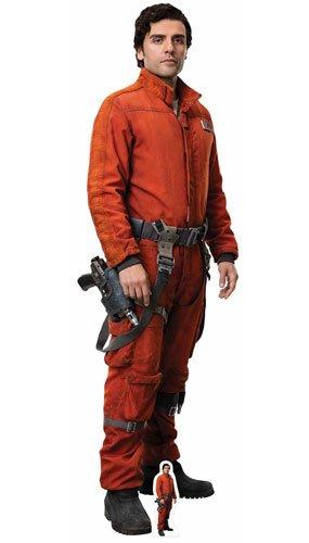 n PoE Dameron (Rebsorte) (Star Wars: Die letzten Jedi) Ausschnitt, Mehrfarbig (Star Wars Karton Ausschnitte)