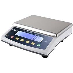 GundG PLC - Bilancia di precisione da tavolo, per laboratorio, industria, oro, 30kg/1g, utilizzabile a batteria