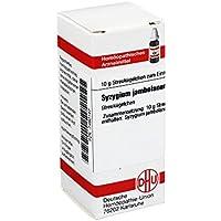 SYZYGIUM JAMBOLANUM D 6 Globuli 10 g preisvergleich bei billige-tabletten.eu