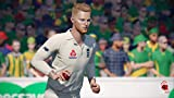 Cricket 19 - The Official Game of the Ashes - PlayStation 4 (PS4)