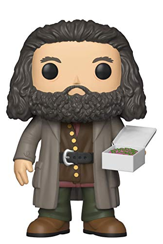 Funko 35508 Pop Vinyl: Harry Potter S5: 6 'Hagrid w / Cake, Multi