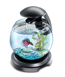 Tetra cascade globe noire aquarium pour poisson for Aquarium poisson rouge amazon