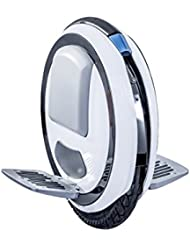 Ninebot One E+ By Segway