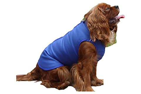Step In Waterproof Luxury Dog Coat Royal Blue (18