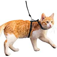 MEISO Adjustable Cat Harness and Lead Set Nylon Leash for Kitty Kitten Walking Black