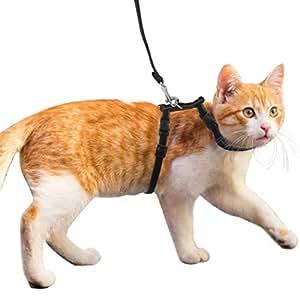 MEISO Verstellbares Katzengeschirr und Leine aus Samt und Nylon für Kätzchen, Schwarz