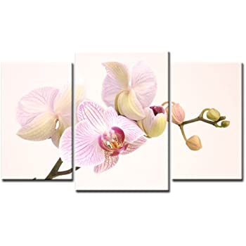 top xxl bild auf leinwand orchideen bl te bilder 3 teile art nr amxl30228 wei bilder. Black Bedroom Furniture Sets. Home Design Ideas