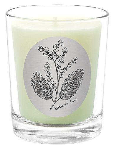 Qualitas Bienenwachs 6–1/-/Bratenspritze Kerze, Mimosa Baum Duft