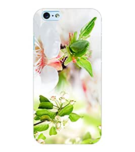 ColourCraft Flowers Design Back Case Cover for APPLE IPHONE 6S