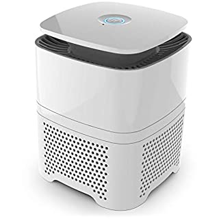 Pro Breeze® 4-in-1 Air Purifier with Pre, True HEPA & Active Carbon Filter with Negative Ion Generator. Personal Desktop Room Air Cleaner for Home, Office for Allergies, Smoke, Dust, Pollen & Pet hair