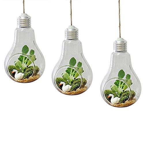 Qingsun Lot de 3 Pots à suspendre Vase en verre Transparente pour Plantes Fleurs Décoration de Jardin Maison