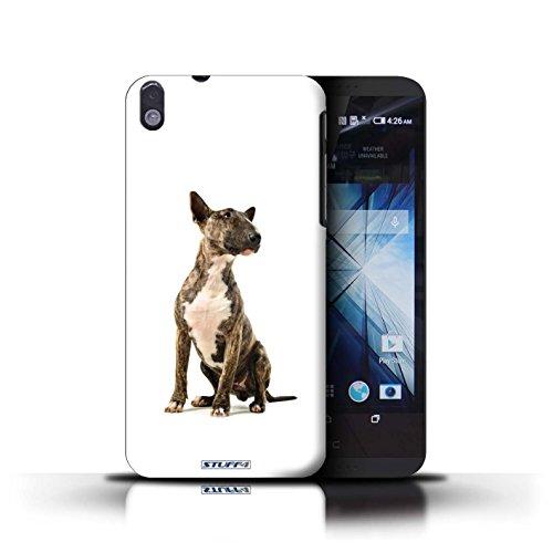 Kobalt® Imprimé Etui / Coque pour HTC Desire 816 / Cocker Spaniel conception / Série Chiens Bull Terrier
