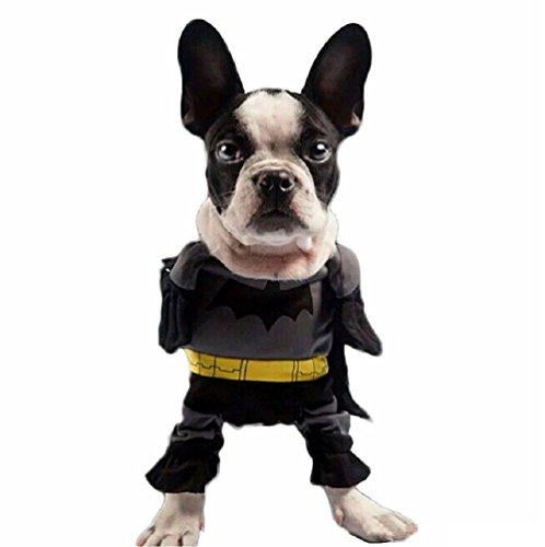 n Fledermaus für Hund und Katze (S) (Fledermaus Kostüme Für Katzen)
