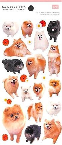 Süße niedlicher Spitz Hund Tier Sticker von Mind Wave