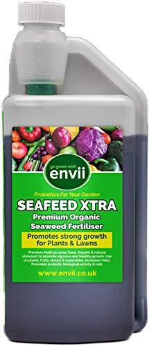 Envii Seafeed Xtra - Organic Liquid Seaweed Fertiliser - 1 Litre