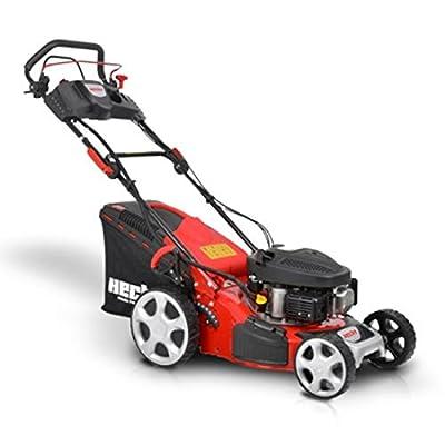HECHT Benzin-Rasenmäher 543 SWE Rasenmäher + Elektro-Start Funktion (2,6 kW (3,5 PS), Schnittbreite 43 cm, 50 Liter Fangkorbvolumen, 7-fache Schnitthöhenverstellung 25-75 mm, Radantrieb)