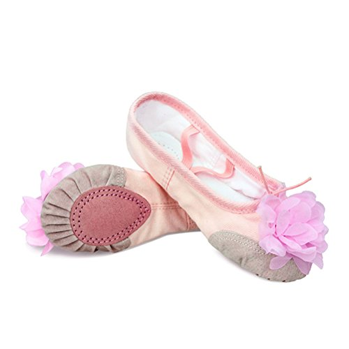Zhhlinyuan Childs & Adults Canvas Ballet Yoga Soft Dance Shoes Practice Flat Shoes Nude