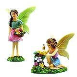 PRETMANNS Jardín de Hadas Miniatura Hadas-Colorido jardín de Hadas Kit de...