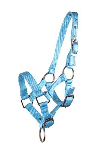 QHP Nylonhalfter Fohlen-Halfter 3fach verstellbar stark (Warmblut-Fohlen, Babyblau)