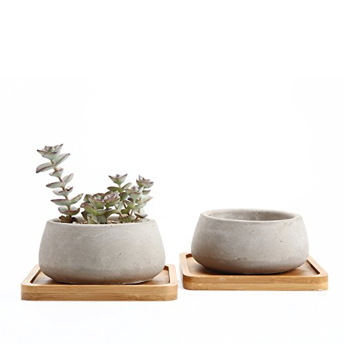 Rachel\'s 9CM Zement Serie Sukkulenten Töpfe Kaktus Pflanze Töpfe Mini Blumentöpfe Große Rund mit Untersetzer 2er Set