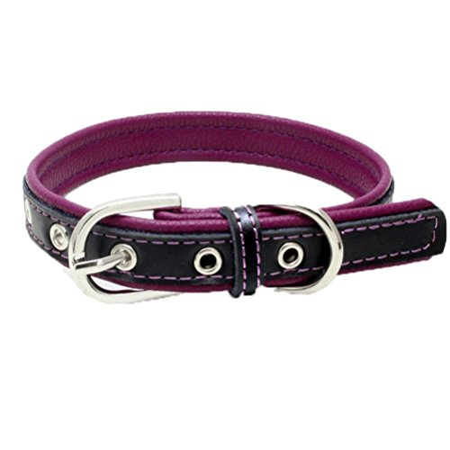 Hmeng Hundehalsband, Haustier Exquisite Verstellbare Hunde Katze Kragen Kontrastfarbe PU Leder Schnalle Halsband Welpen Hund Welpen Haustier Klassische Halsbänder (XS, Lila) -