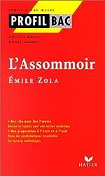 Profil d'une oeuvre : L'assommoir, Zola