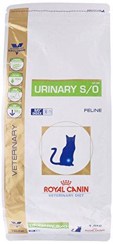 royal canin Urinary Secco Gatto kg. 1.5-Alimenti Dietetici Secchi per Gatti, Multicolore, Unica