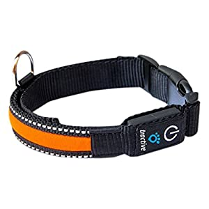 Tractive LED Dog Collar 9