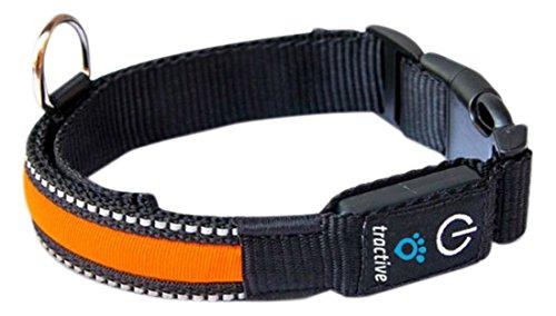 Tractive LED Dog Collar 1