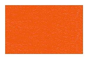 Ursus 3774641 - Cartulina (DIN A4, 300 g/m², 50 Hojas), Color Naranja