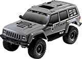 Reely Free Men 1:10 RC Modellauto Elektro Crawler Allradantrieb (4WD) Bausatz