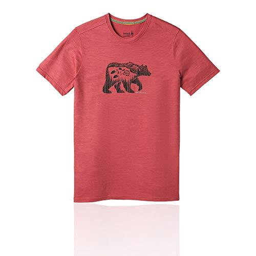 Smartwool Herren Merino Sport 150 Bear Camp Tee T-Shirt, Earth Red Heather, M -
