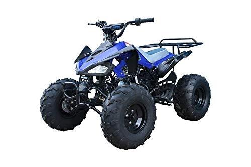 Tao Tao Cheetah 110cc Quad Bike with 8 inch Fat Boi Tyres Blue