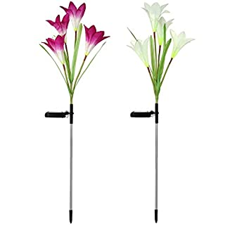 Aisoul Outdoor Solar Garden Stake Lights, 2 Packs Solar Lights with 8 Lily Flowers, Multi-Color Changing LED Solar Lights for Garden, Patio, Backyard (Purple and White)
