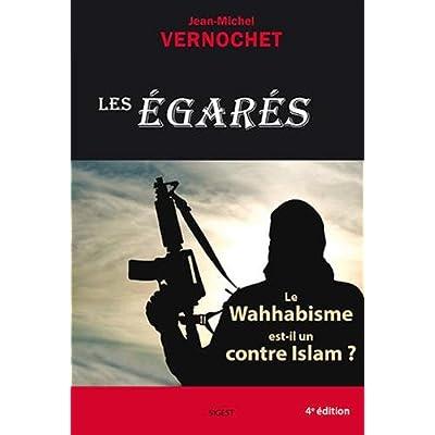 Les Egarés : Le Wahhabisme est-il un contre Islam ?