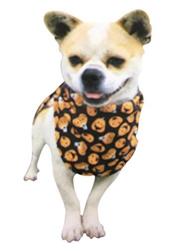 Kleine Hunde Bandana Schal für Halloween Kürbis Halloween-Kürbislaterne