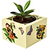 Handcrafted Wooden Decorative Multi Utility Storage Planter Box With Pansies- The Weavers Nest